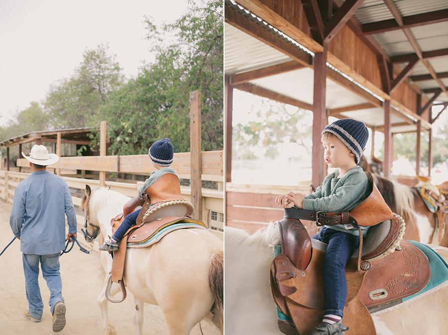 Enjoyed the pony ride. Zoomars