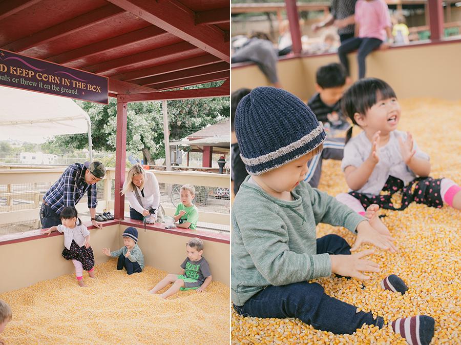Corn pit!! Zoomars