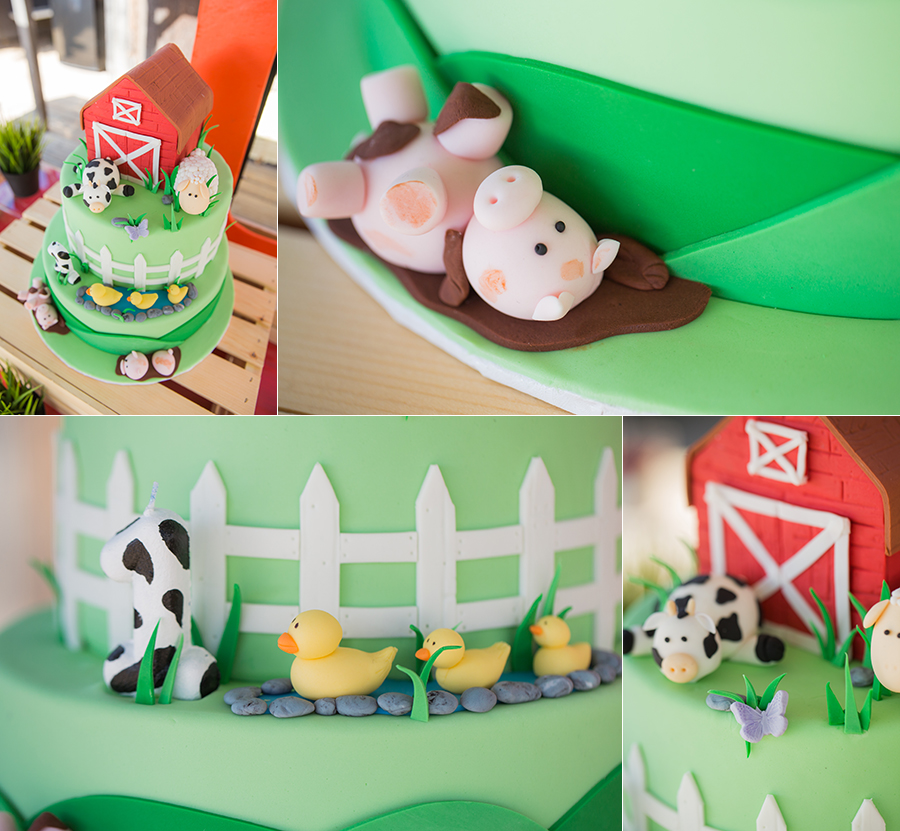 brandon's 1st birthday at zoomars san juan capistrano farmyard themed intricakes