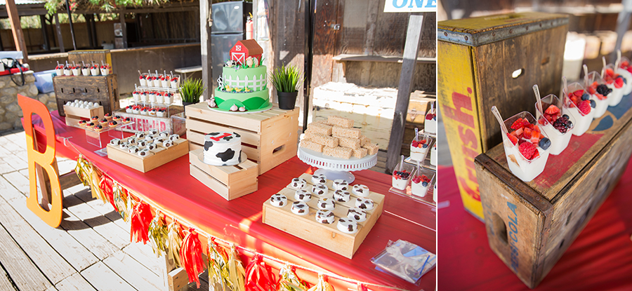 brandon's 1st birthday at zoomars san juan capistrano farmyard themed dessert table