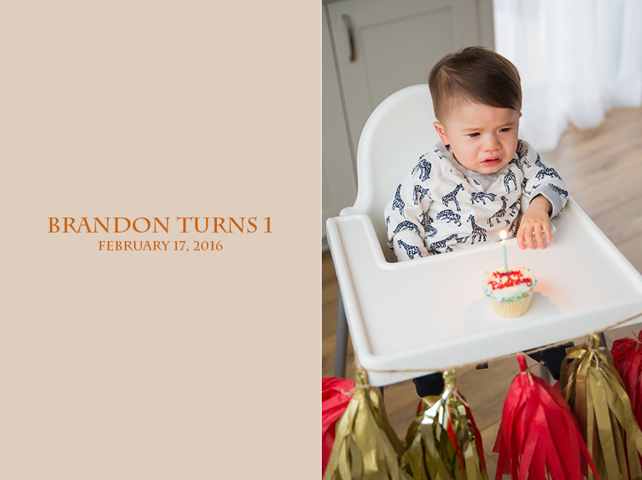 brandon 1st birthday